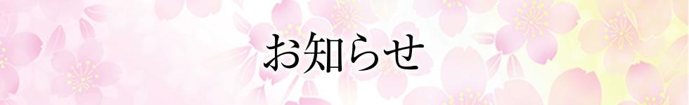 料理長ブログ   新着情報(お知らせ)